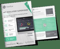 SteelEye Data Platform FactSheet