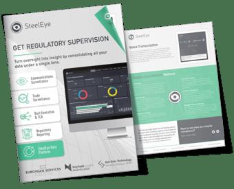 SteelEye Data Platform FactSheet-1